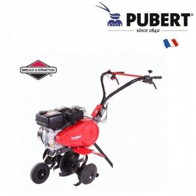 Pubert FPTERRO65BC2